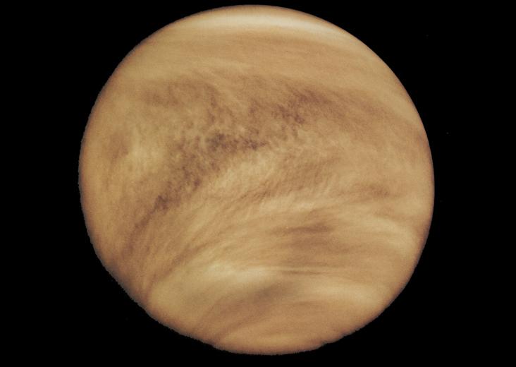 Venüs hep bulutlu. 5 Şubat 1979'da Pioneer tarafından elde edilen görüntüsü. Credit: NSSDC Photo Gallery