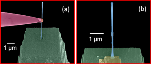 Soldaki renkli görüntü yeşil olarak görülen gömme kolonunda açılan bir deliğin içine mavi gözüken bir nanoteli yerleştirmede kullanılan manipülatör sondayı göstermektedir. Sağda ise bu nanotel platin ile yerine kaynak edilmiş ve manipülatör kolun ise kaldırıldığı durum gösterilmektedir.