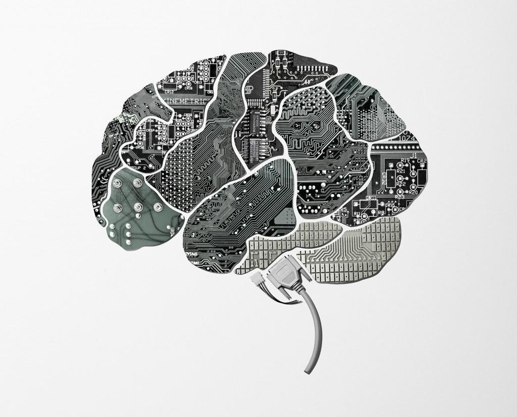 İnsan Beyni Projesi