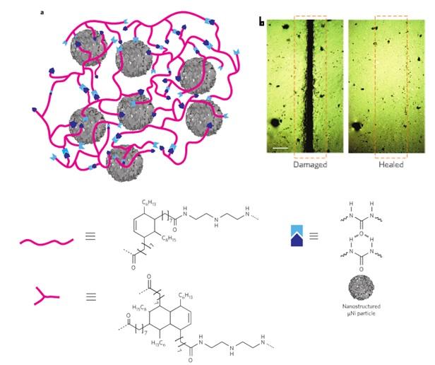 a)Üzerine nanometre büyüklüğündeki nikel parçaları eklenmiş oligomer. b) Hasarlı ve iyileşmiş sentetik madde yüzeyinin mikroskop görüntüsü © Bao, Tee, Stanford
