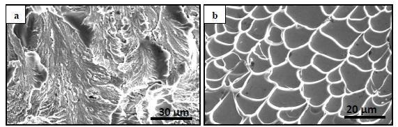 Şekil 1: Kristal Metal (a) ve Amorf Metal (b) Kırılma Yüzeyleri SEM Görüntüleri [2]