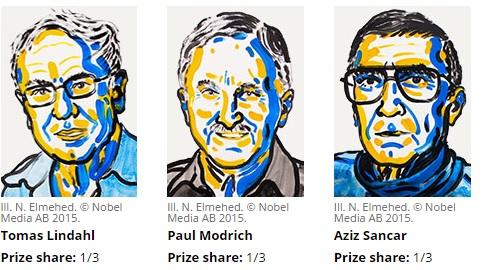 2015 Nobel Kimya Ödülü Tomas Lindahl, Paul Modrich ve Aziz Sancar arasında paylaşıldı.