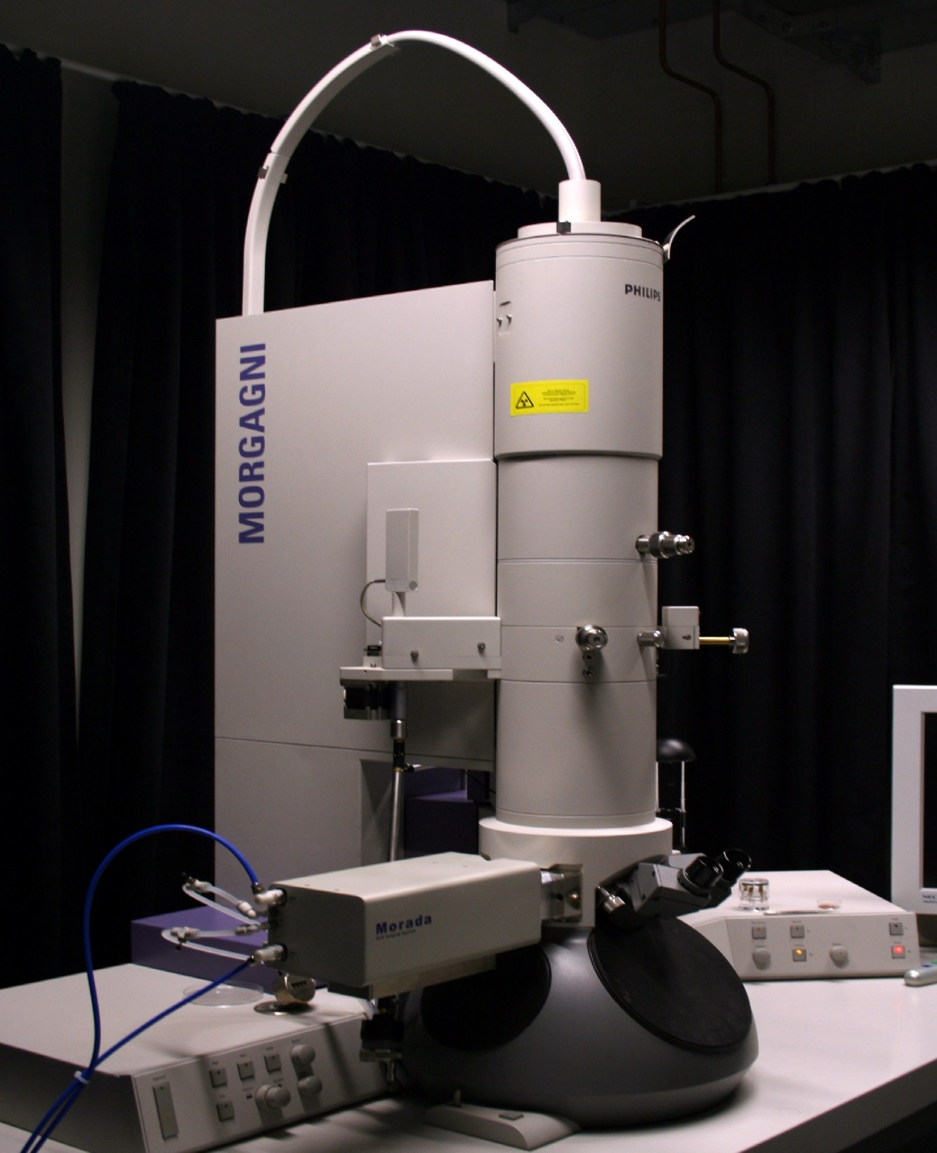 Floresan mikroskopi: çalışma özellikleri