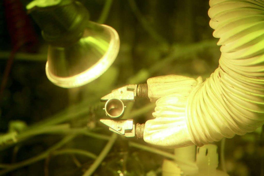 """ABD'deki Oak Ridge Ulusal Laboratuvarı'ndaki """"sıcak hücre""""de en son üretilen plütonyum-238 oksiti. Jason Richards/ORNL"""