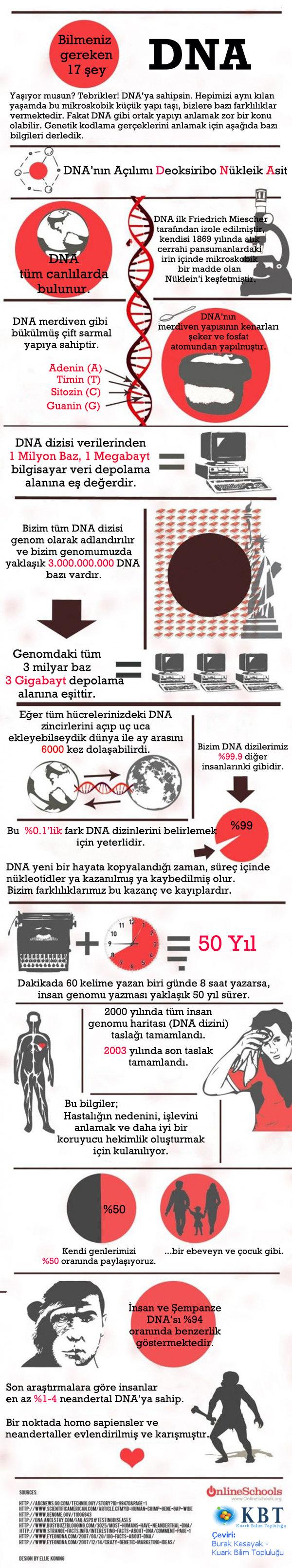 OnlineSchools'un hazırladığı ve Türkçeleştirdiğimiz DNA bilgi-grafiği
